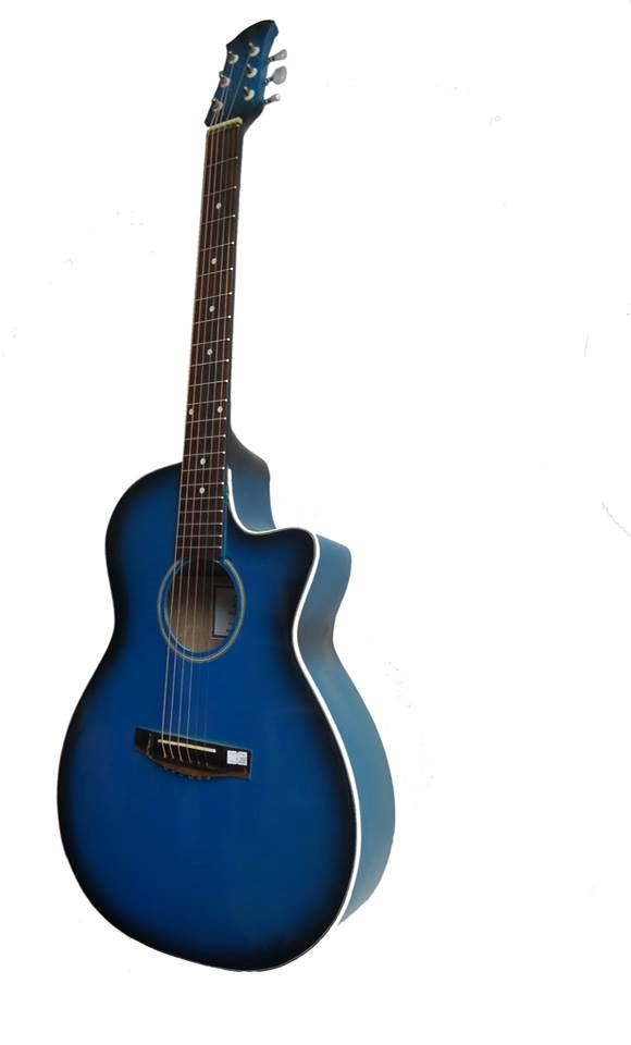 Guitar Acoustic GA- 12EL