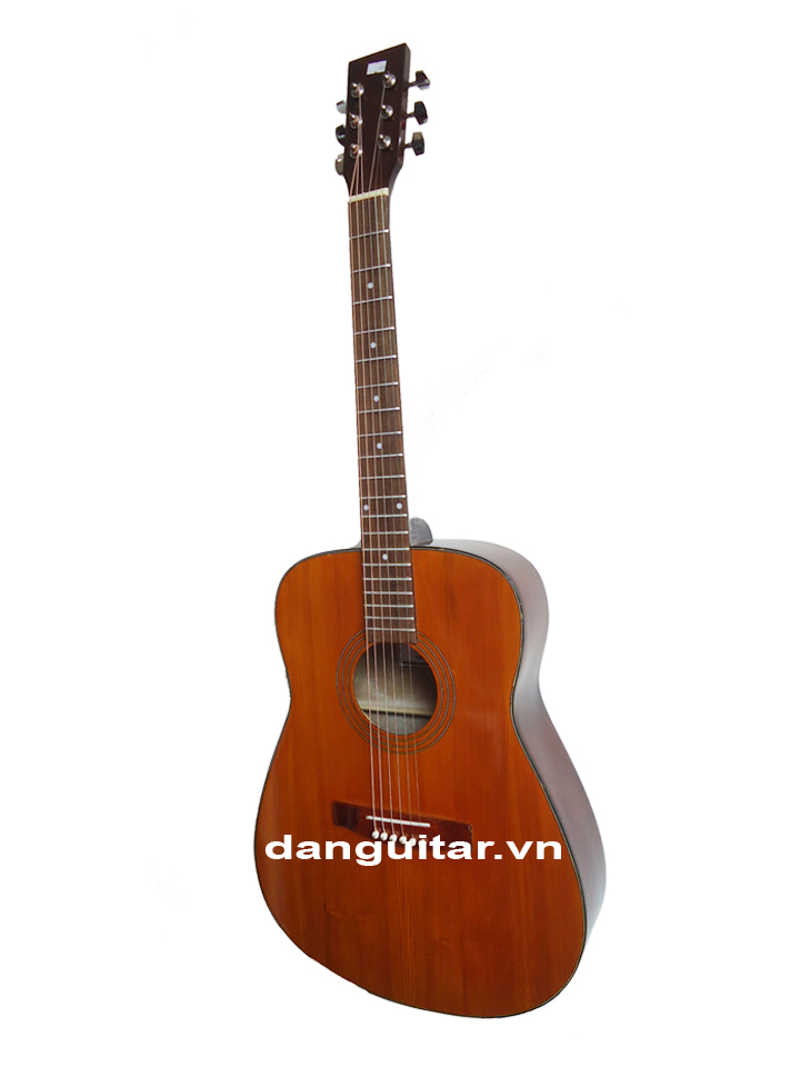 Guitar GA-10EV
