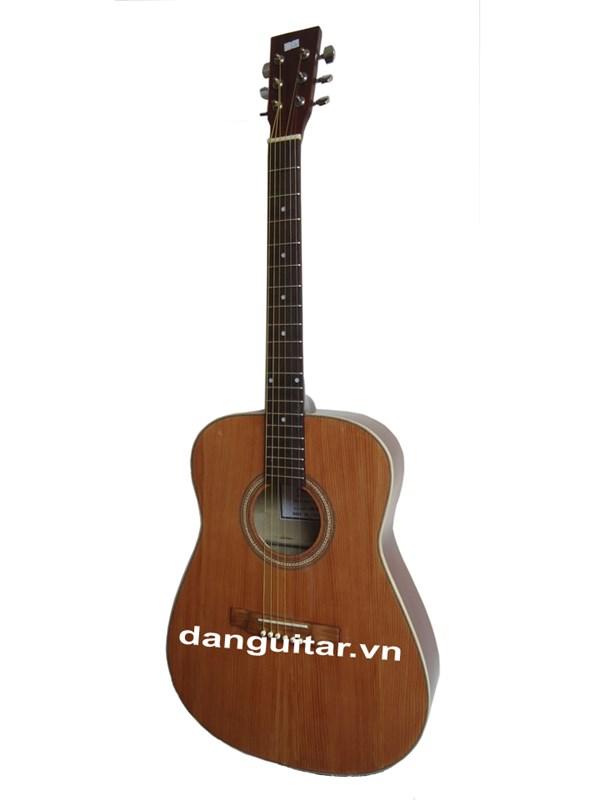 Đàn Guitar Acoustic GA- 13 EV